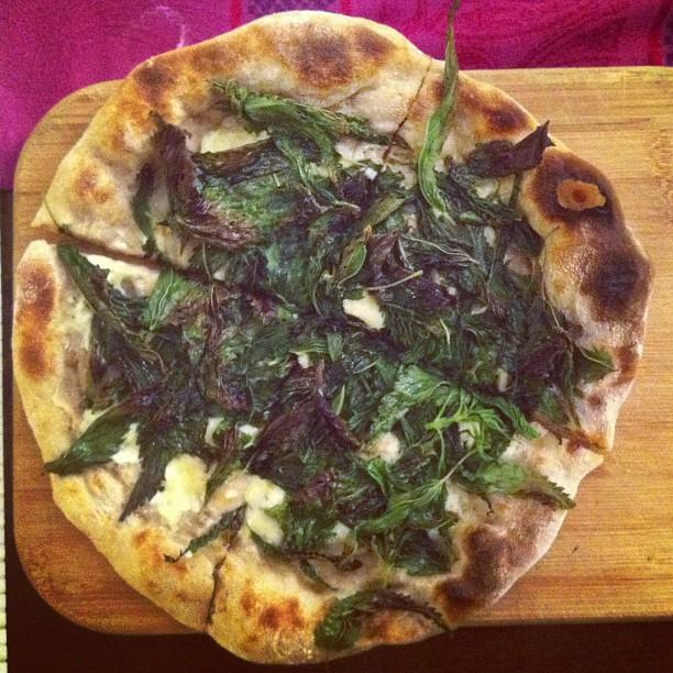 Pizza nettle