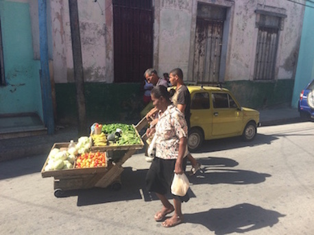 Fruit Peddler Santiago